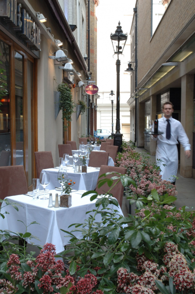 Caf des amis french in london greater london the for Cafe de jardin in covent garden